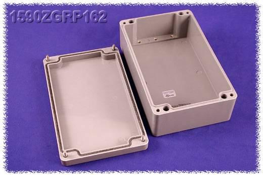 Hammond Electronics 1590ZGRP162PL Inlegplaat Plaatstaal Naturel 1 stuks