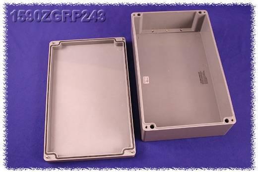 Hammond Electronics 1590ZGRP243PL Inlegplaat Plaatstaal Naturel 1 stuks