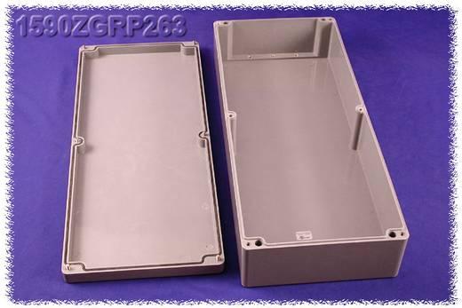 Hammond Electronics 1590ZGRP263PL Inlegplaat Plaatstaal Naturel 1 stuks