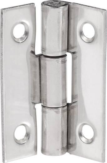 Smalle scharnieren (l x b) 30 mm x 22 mm Roestvrijstaal