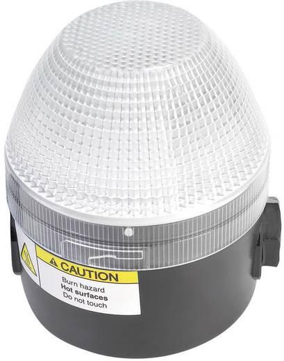 Auer Signalgeräte NES Signaallamp Helder Helder Continu licht, Knipperlicht 24 V/DC, 24 V/AC, 48 V/DC, 48 V/AC