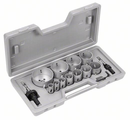Bosch Accessories Gatenzagenset 14 delig