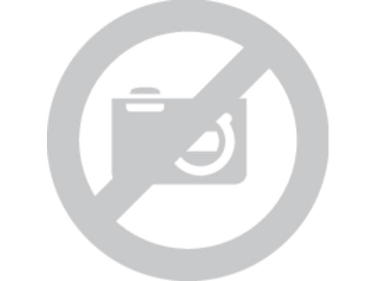 Excenterschuurpapier met klittenband, geperforeerd Korrelgrootte 40 (Ø) 150 mm Bosch Best for Wood 2
