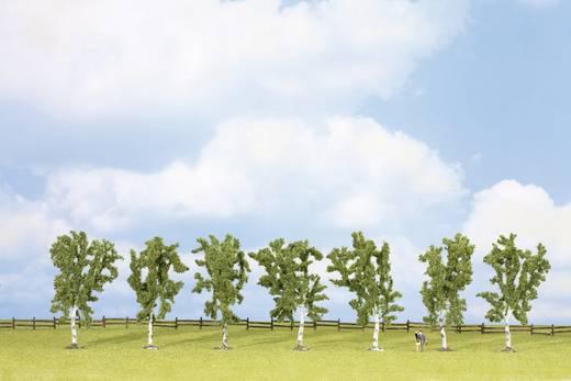 Set bomen Berk Hoogte (min.): 100 mm Hoogte (max.): 100 mm NOCH 25096 Groen 7 stuks
