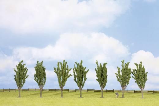 Set bomen Populier Hoogte (min.): 120 mm Hoogte (max.): 120 mm NOCH 25098 Groen 7 stuks