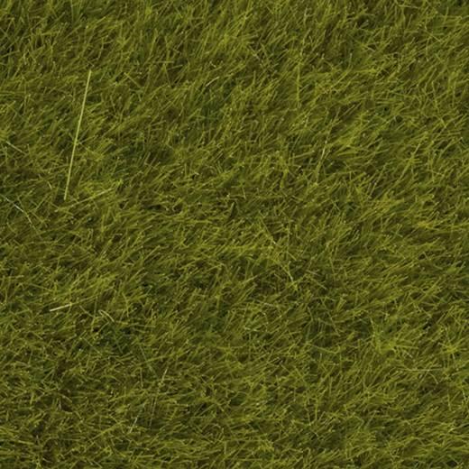 NOCH 07100 Wildgras XL Weide Weide