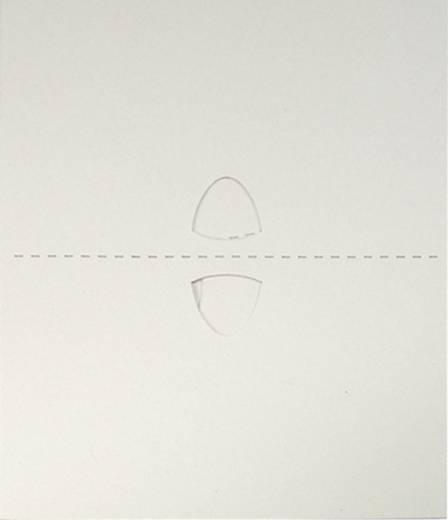 Folie voor kleefvallen Glupac Folie INF-252 Geschikt voor merk Flypod FP18 6 stuks