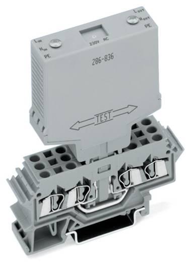 WAGO 286-835/115-000 Overspanningsafgeleider 1 stuks