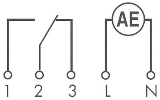 Finder 12.91.8.230.0000 Schakelklok voor DIN-rails Voedingsspanning (num): 230 V/AC 1x wisselaar 16 A 250 V/AC