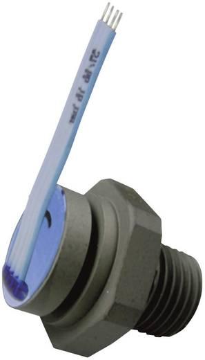 Druksensor 1 stuks B+B Thermo-Technik DS-EDM-D-R60B 0 bar tot 60 bar