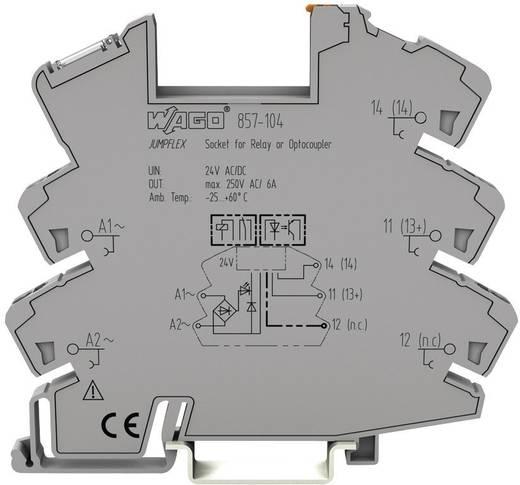 WAGO 857-104 Relaissocket 1 stuks (b x h x d) 6 x 81 x 94 mm