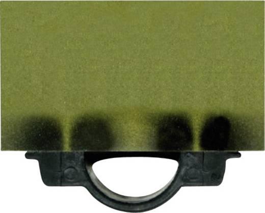 Conrad Components Magneetveld-visualiseringskaart met beschermhoes (b x h) 80 mm x 54 mm