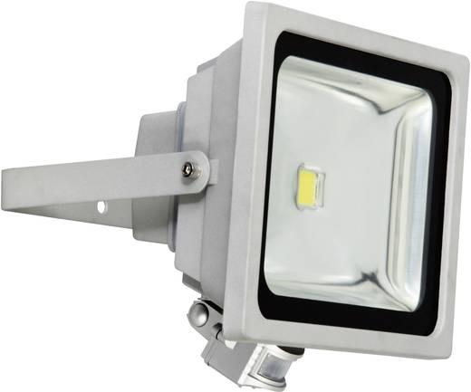 LED-buitenschijnwerper met bewegingsmelder 50 W Daglicht-wit XQ lite XQ-Lite XQ1226 Grijs