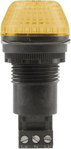 Auer Signalgeräte IBS Signaallamp LED Oranje Oranje Continu licht, Knipperlicht 12 V/DC, 12 V/AC