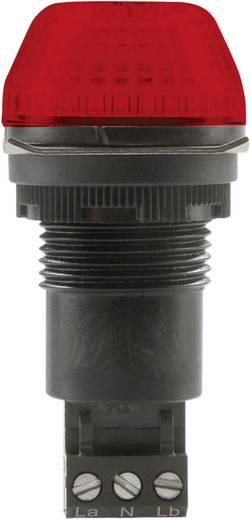 Auer Signalgeräte IBS Signaallamp LED Rood Rood Continu licht, Knipperlicht 12 V/DC, 12 V/AC