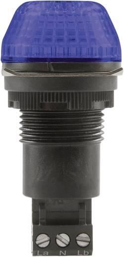 Auer Signalgeräte IBS Signaallamp LED Blauw Blauw Continu licht, Knipperlicht 24 V/DC, 24 V/AC