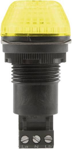 Auer Signalgeräte IBS Signaallamp LED Geel Geel Continu licht, Knipperlicht 230 V/AC