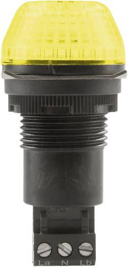 Auer Signalgeräte IBS Signaallamp LED Geel Geel Continu licht, Knipperlicht 24 V/DC, 24 V/AC