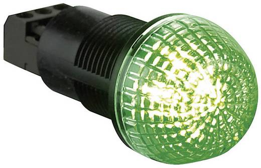 Auer Signalgeräte ITS Signaallamp LED Rood, Groen Continu licht 24 V/DC, 24 V/AC