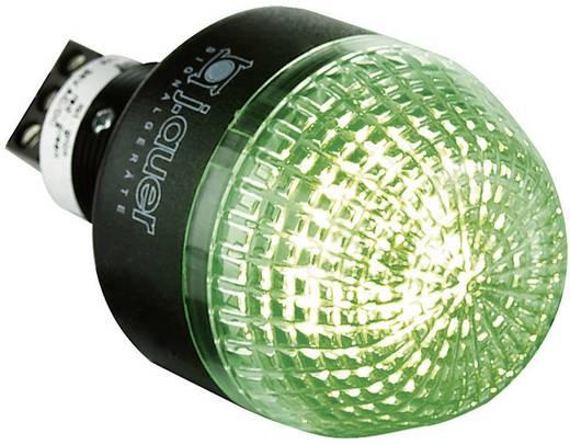 Auer Signalgeräte ITM Signaallamp LED Rood, Groen Continu licht 24 V/DC, 24 V/AC
