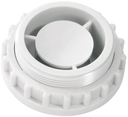 Zoemer Auer Signalgeräte ESZ-K Continu geluid, Pulstoom 24 V/DC, 24 V/AC 90 dB