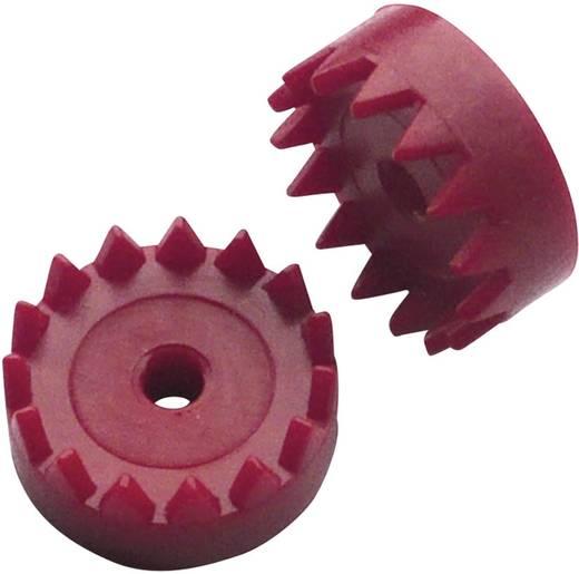 Modelcraft Boordiameter 2.9 mm Aantal tanden 15