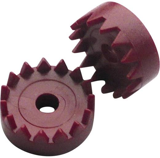Modelcraft Kroonwielen (educatief) Boordiameter 3.9 mm Aantal tanden 15