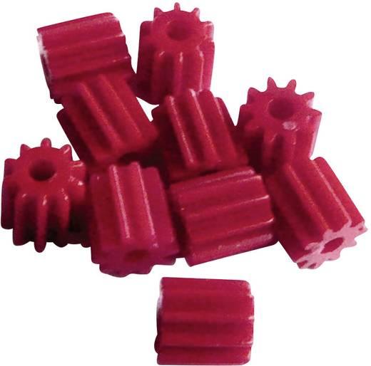 Modelcraft Soort module 0.5 Boordiameter 1.9 mm Aantal tanden 10