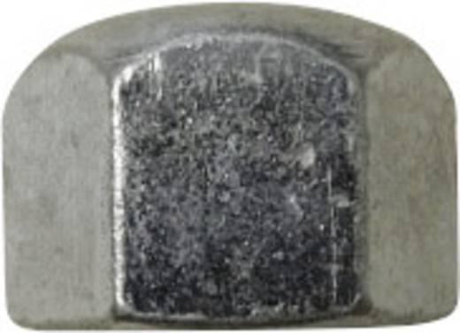 Zeskant dopmoeren M3 DIN 917 Staal verzinkt 10 stuks TOOLCRAFT M3 D917-STAHL:A2K 194782
