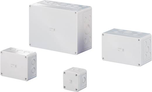 Installatiebehuizing 65 x 65 x 57 Polycarbonaat Lichtgrijs (RAL 7035) Rittal PC 9500.050 1 stuks