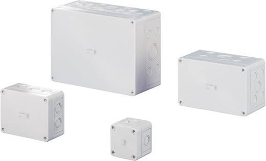 Rittal 9500.050 Installatiebehuizing 65 x 65 x 57 Polycarbonaat Lichtgrijs (RAL 7035) 1 stuks