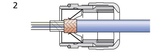 Wartel M25 Messing Messing LappKabel SKINTOP® MS-SC-M 25X1.5 1 stuks