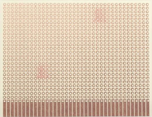 WR Rademacher WR-Typ 903-1 Experimenteer printplaat Epoxide (l x b) 100 mm x 80 mm 35 µm Rastermaat 2.54 mm Inhoud 1 stuks