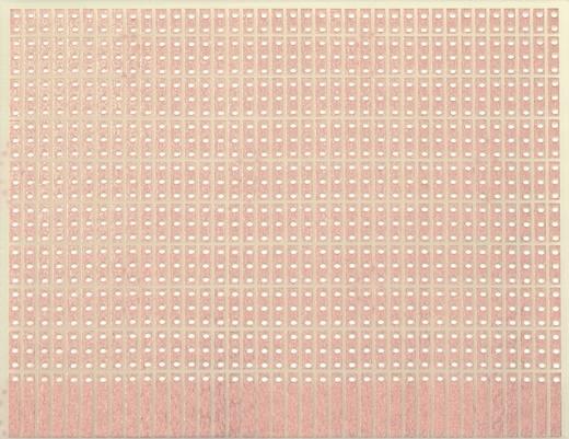 WR Rademacher WR-Typ 904-1 Experimenteer printplaat Epoxide (l x b) 100 mm x 80 mm 35 µm Rastermaat 2.54 mm Inhoud 1 st