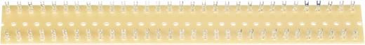 Soldeerlijst Dubbele rij Totaal aantal polen 60 Hardpapier (l x b) 250 mm x 38 mm WR Rademacher WR-Typ 1020 1 stuks