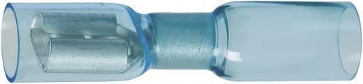 DSG Canusa Vlakstekker Met krimpkous Insteekbreedte: 6.3 mm Insteekdikte: 0.8 mm 180 ° Volledig geïsoleerd Blauw 1 stuk