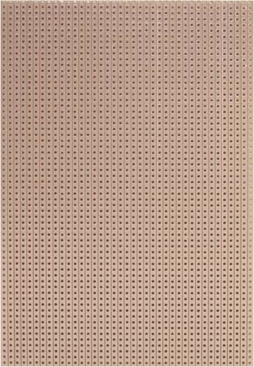 WR Rademacher WR-Typ 710-5 Printplaat Hardpapier (l x b) 160 mm x 100 mm 35 µm Rastermaat 2.54 mm Inhoud 1 stuks