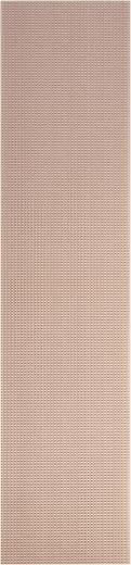 WR Rademacher WR-Typ 710-7 Printplaat Hardpapier (l x b) 500 mm x 100 mm 35 µm Rastermaat 2.54 mm Inhoud 1 stuks