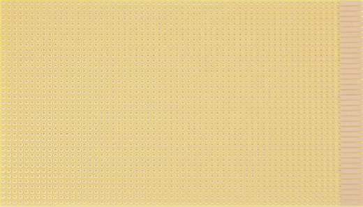 WR Rademacher WR-type 820 Printplaat Hardpapier (l x b) 160 mm x 100 mm 35 µm Rastermaat 2.54 mm Inhoud 1 stuks
