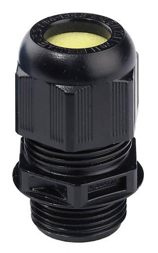 Wartel ATEX M25 Zwart (RAL 9005) Wiska ESKE/1 M25 1 stuks