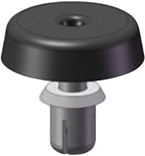 Behuizingvoet met instelbare bevestiging Polyamide Zwart Richco FSR-6 1 stuks