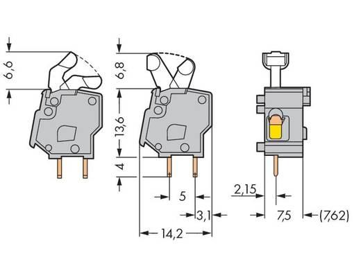 Veerkachtklemblok 2.50 mm² Aantal polen 1 PCB MOD.T.BL. LIGHT GREY W.LEVER WAGO Lichtgrijs 400 stuks