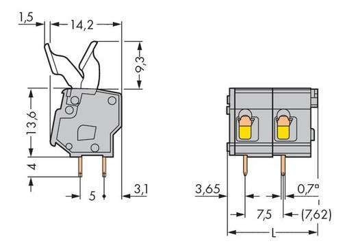 Veerkachtklemblok 2.50 mm² Aantal polen 2 257-502/333-000 WAGO Grijs 280 stuks