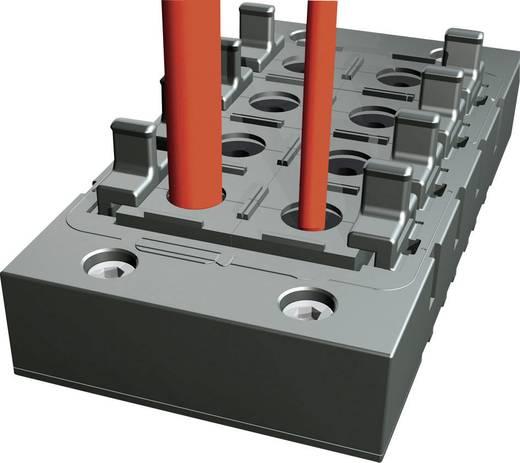 Rittal Stekkerdoorvoer-afdichtframe 2400900 (l x b x h) 145 x 67 x 19 mm IP64 Zwart Inhoud 1 stuks