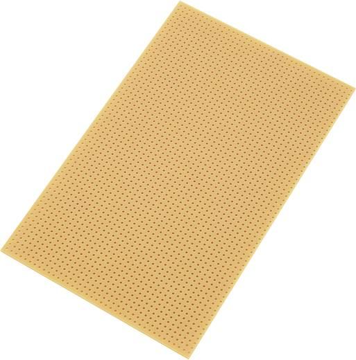 Conrad Components SU528455 Printplaat Zonder Cu-laag Hardpapier (l x b) 160 mm x 100 mm Rastermaat 2.54 mm Inhoud 1 stu