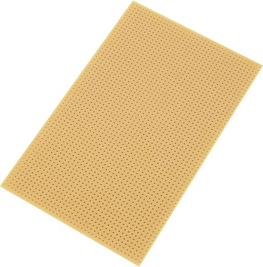Conrad Components SU528455 Printplaat Zonder Cu-laag Hardpapier (l x b) 160 mm x 100 mm Rastermaat 2.54 mm Inhoud 1 stuks