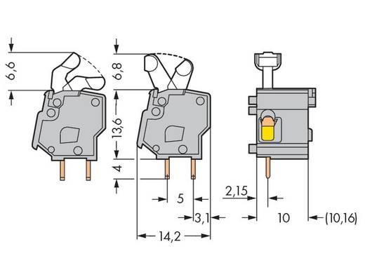 Veerkachtklemblok 2.50 mm² Aantal polen 1 PCB MOD.T.BL.GREY W.LEVER WAGO Grijs 300 stuks