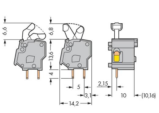 Veerkachtklemblok 2.50 mm² Aantal polen 1 WAGO Lichtgroen 300 stuks