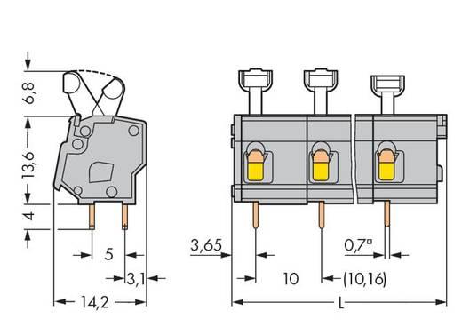 Veerkachtklemblok 2.50 mm² Aantal polen 5 WAGO Grijs 80 stuks