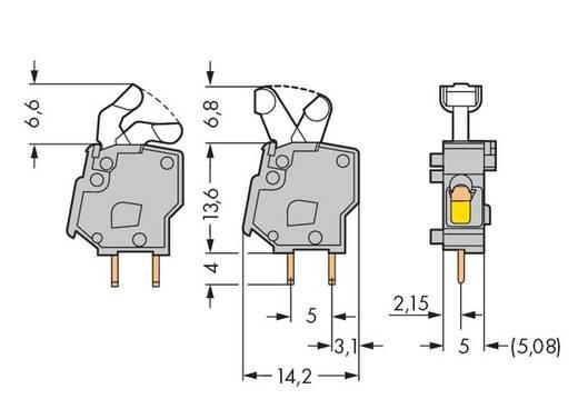 Veerkachtklemblok 2.50 mm² Aantal polen 1 WAGO Lichtgrijs 500 stuks